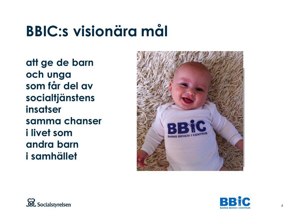 BBIC:s visionära mål