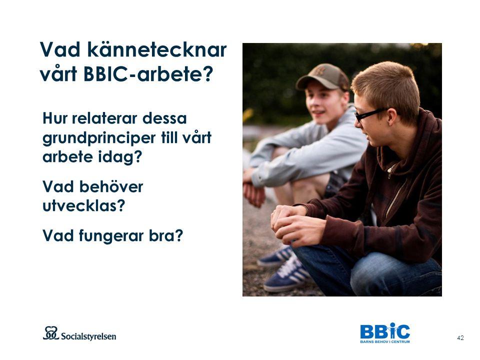 Vad kännetecknar vårt BBIC-arbete