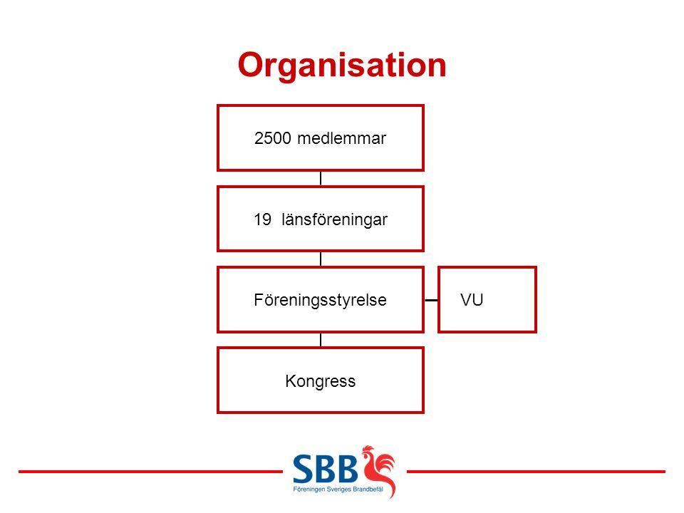 Organisation 2500 medlemmar 19 länsföreningar Föreningsstyrelse