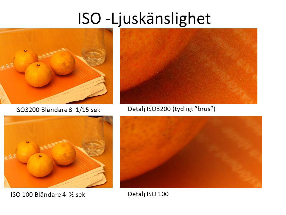 ISO -Ljuskänslighet ISO3200 Bländare 8 1/15 sek