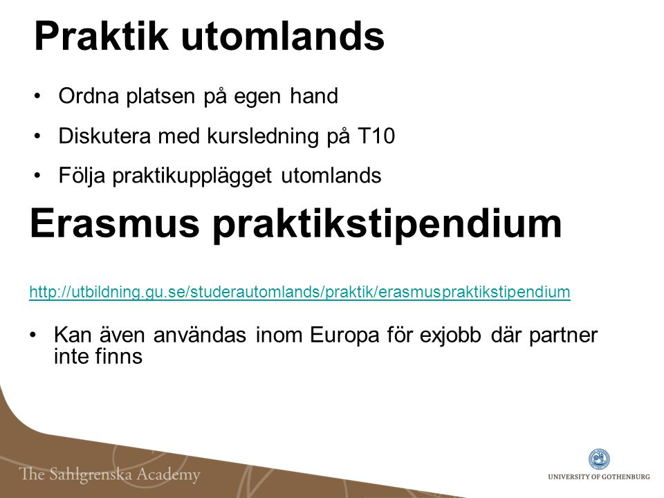 Erasmus praktikstipendium