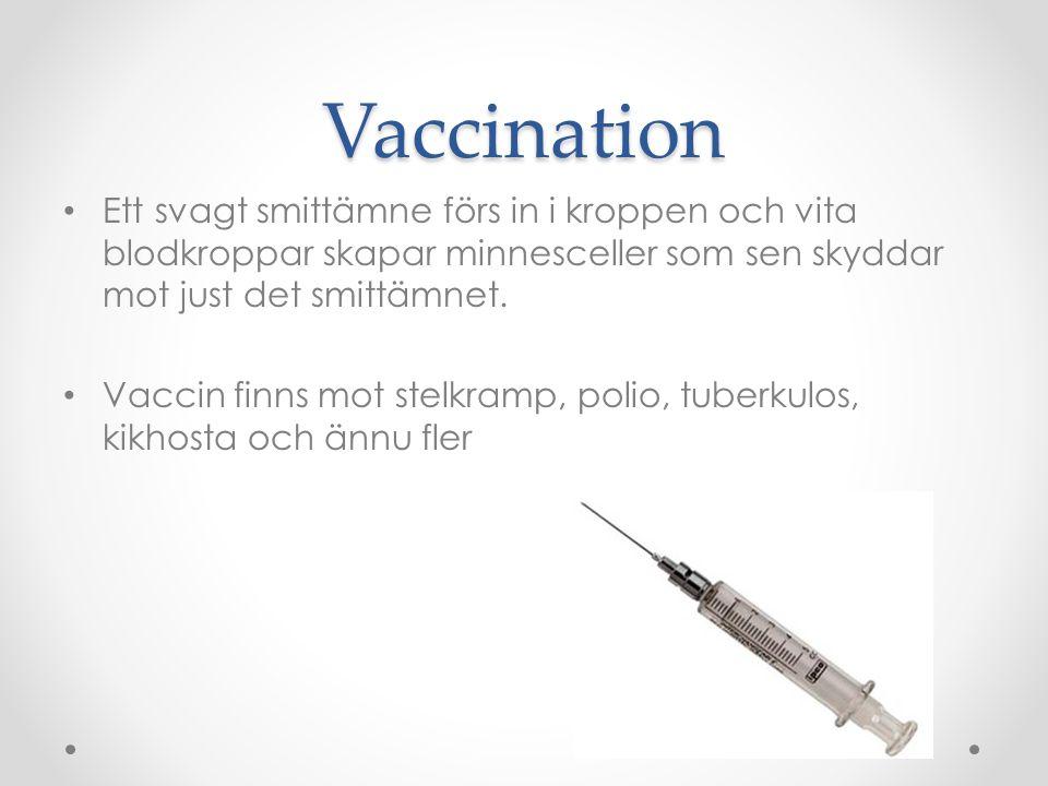 Vaccination Ett svagt smittämne förs in i kroppen och vita blodkroppar skapar minnesceller som sen skyddar mot just det smittämnet.