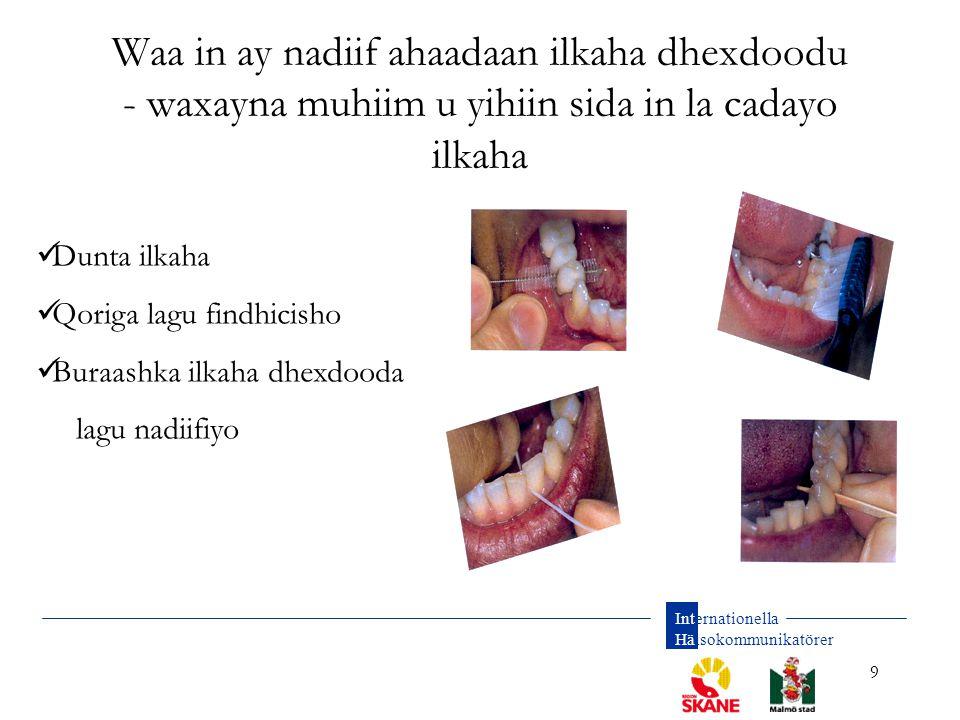 Waa in ay nadiif ahaadaan ilkaha dhexdoodu - waxayna muhiim u yihiin sida in la cadayo ilkaha