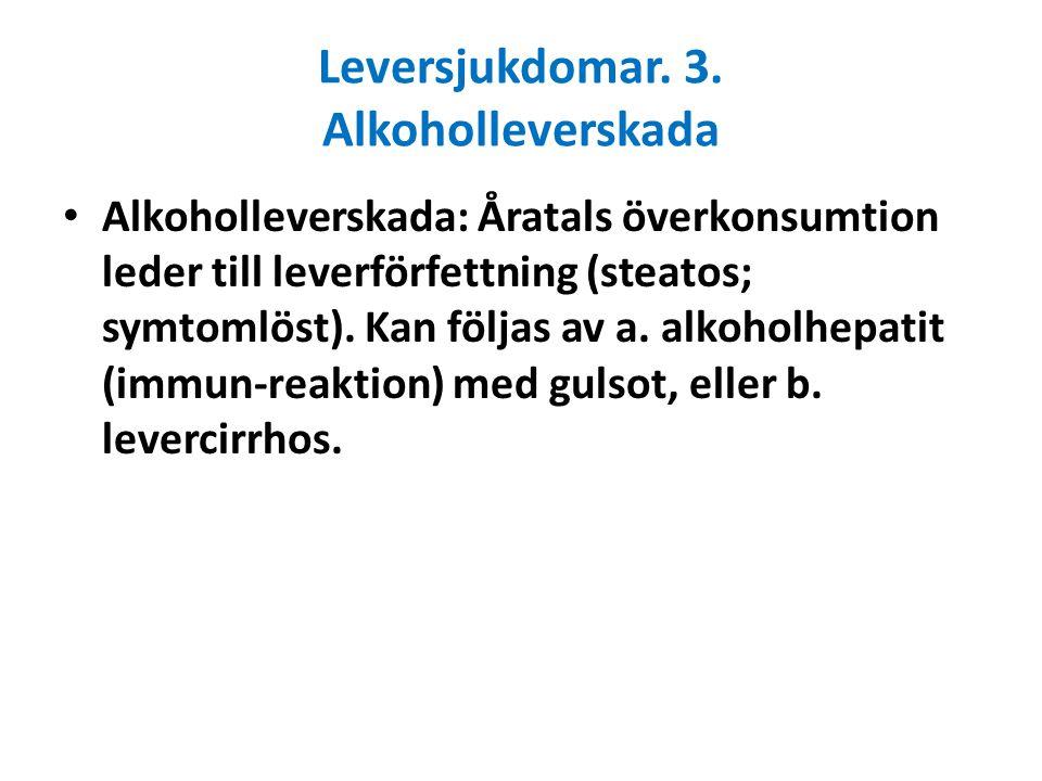 Leversjukdomar. 3. Alkoholleverskada