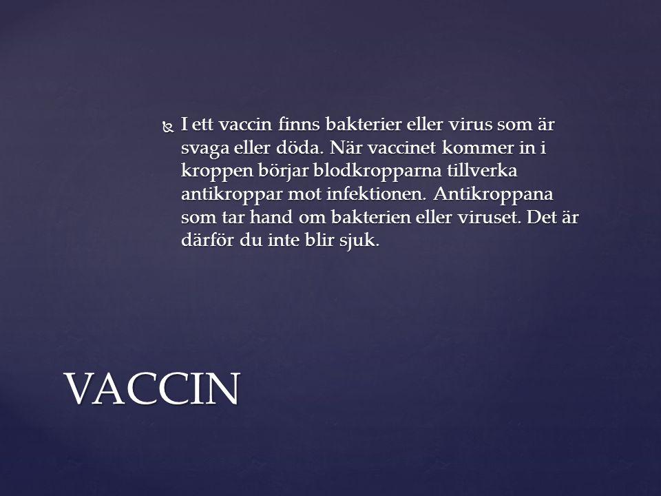 I ett vaccin finns bakterier eller virus som är svaga eller döda