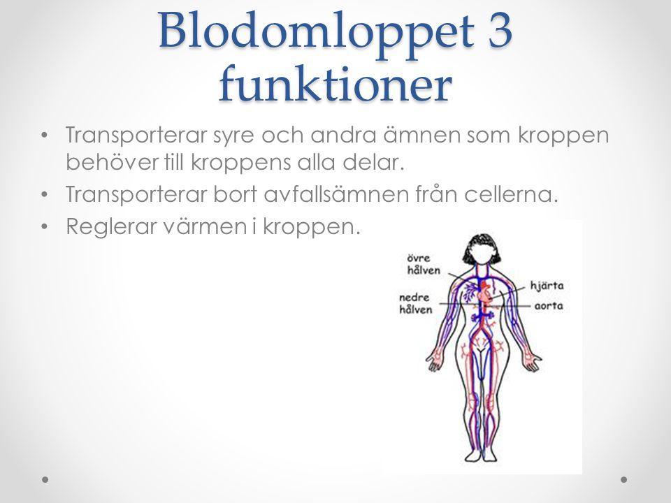 Blodomloppet 3 funktioner