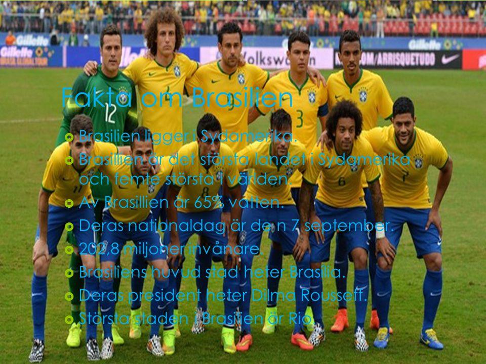 Fakta om Brasilien Brasilien ligger i Sydamerika.