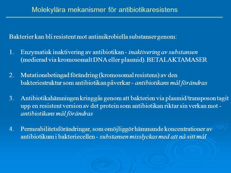 Molekylära mekanismer för antibiotikaresistens