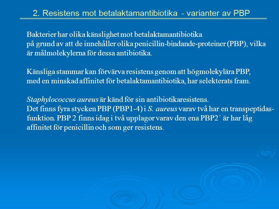 2. Resistens mot betalaktamantibiotika - varianter av PBP