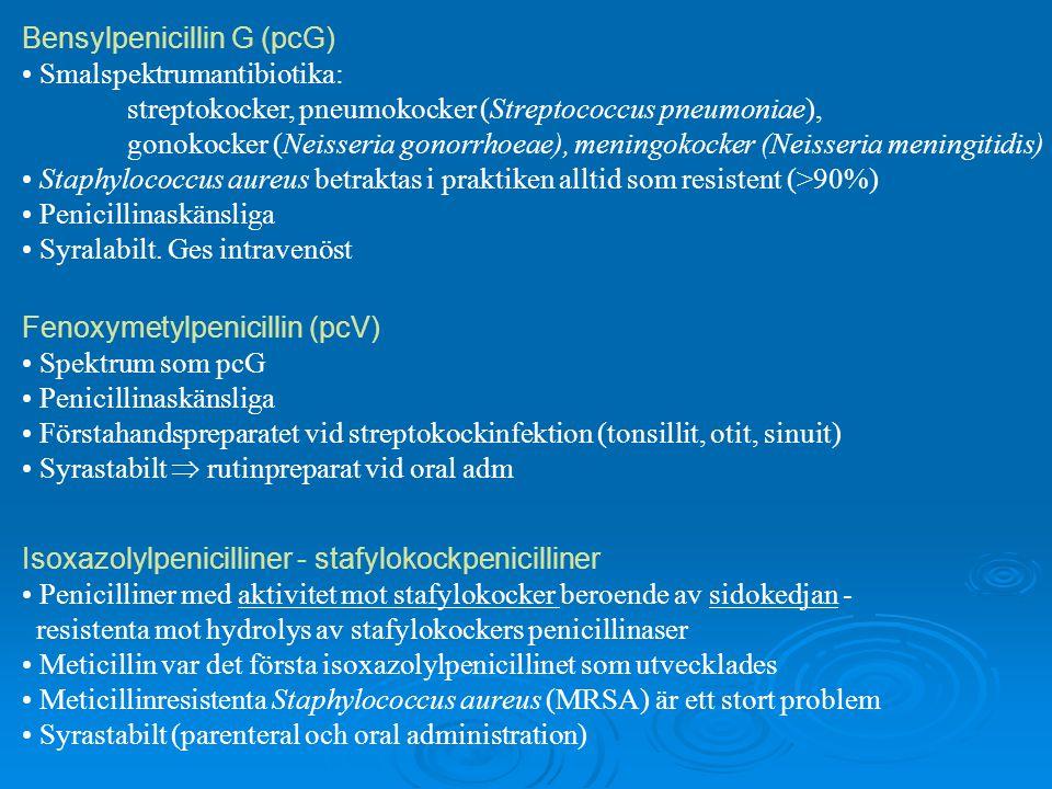 Bensylpenicillin G (pcG)