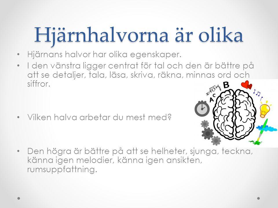 Hjärnhalvorna är olika