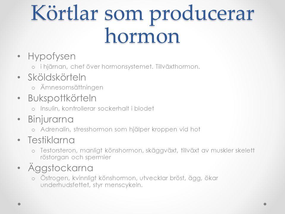 Körtlar som producerar hormon