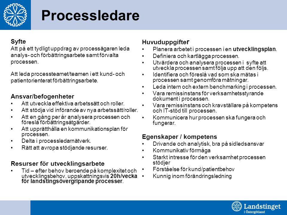 Processledare Syfte Ansvar/befogenheter Resurser för utvecklingsarbete