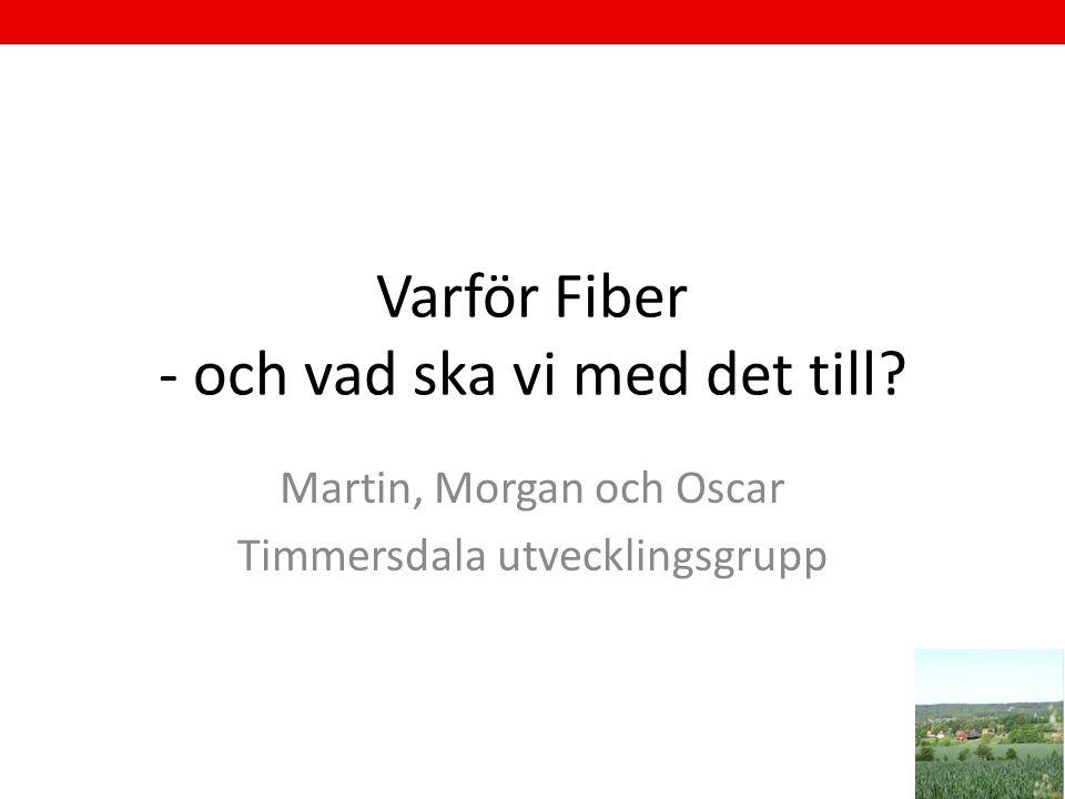 Varför Fiber - och vad ska vi med det till