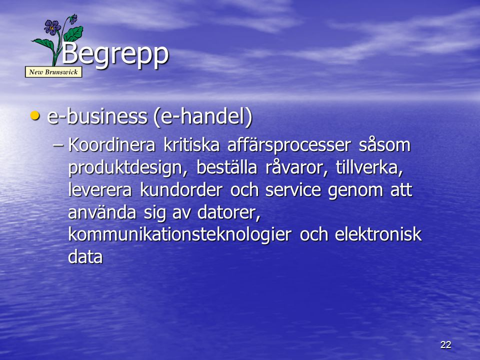 Begrepp e-business (e-handel)