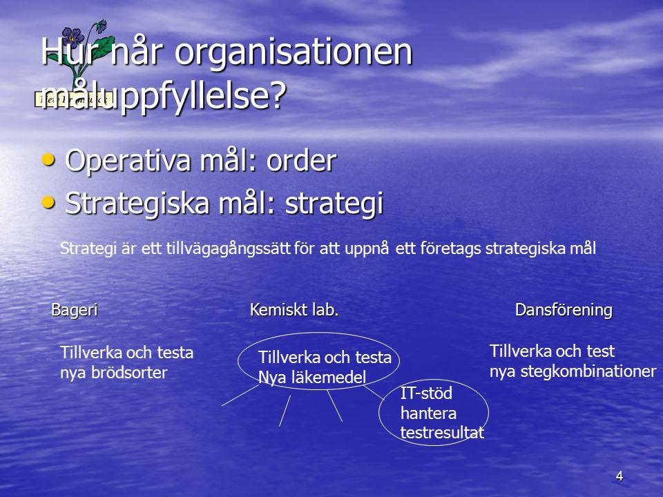 Hur når organisationen måluppfyllelse
