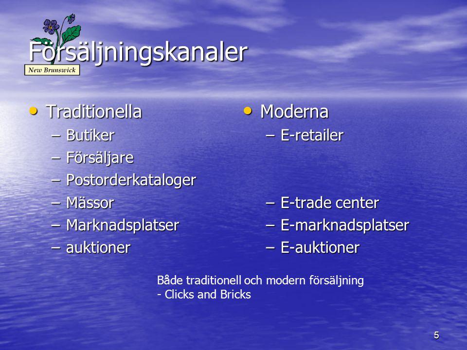 Försäljningskanaler Traditionella Moderna Butiker Försäljare