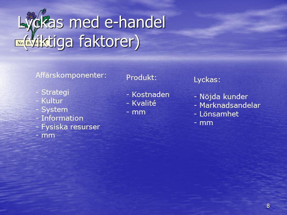 Lyckas med e-handel (viktiga faktorer)