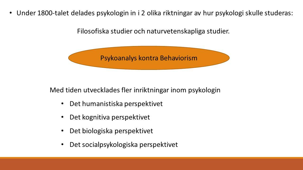 Filosofiska studier och naturvetenskapliga studier.