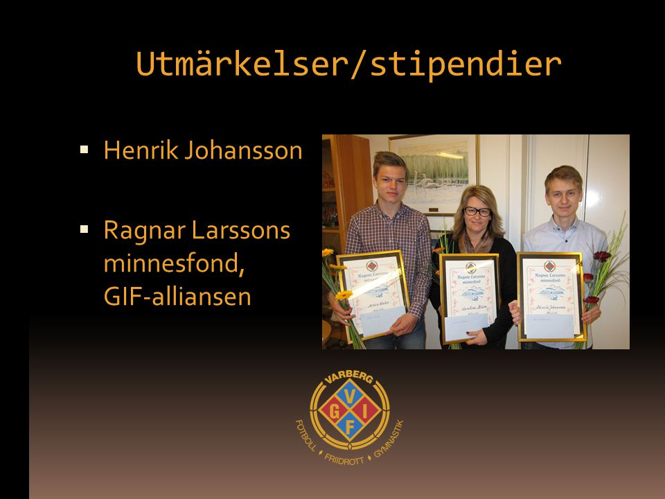 Utmärkelser/stipendier