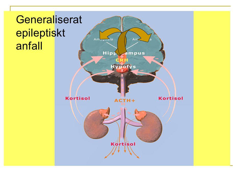 Generaliserat epileptiskt anfall