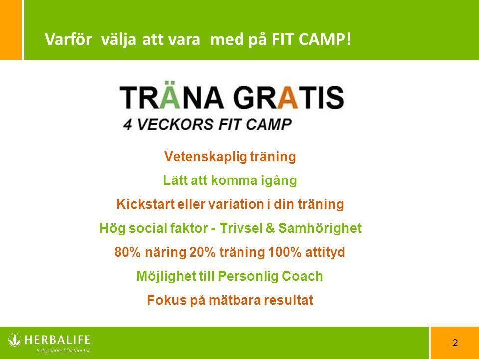 Varför välja att vara med på FIT CAMP!