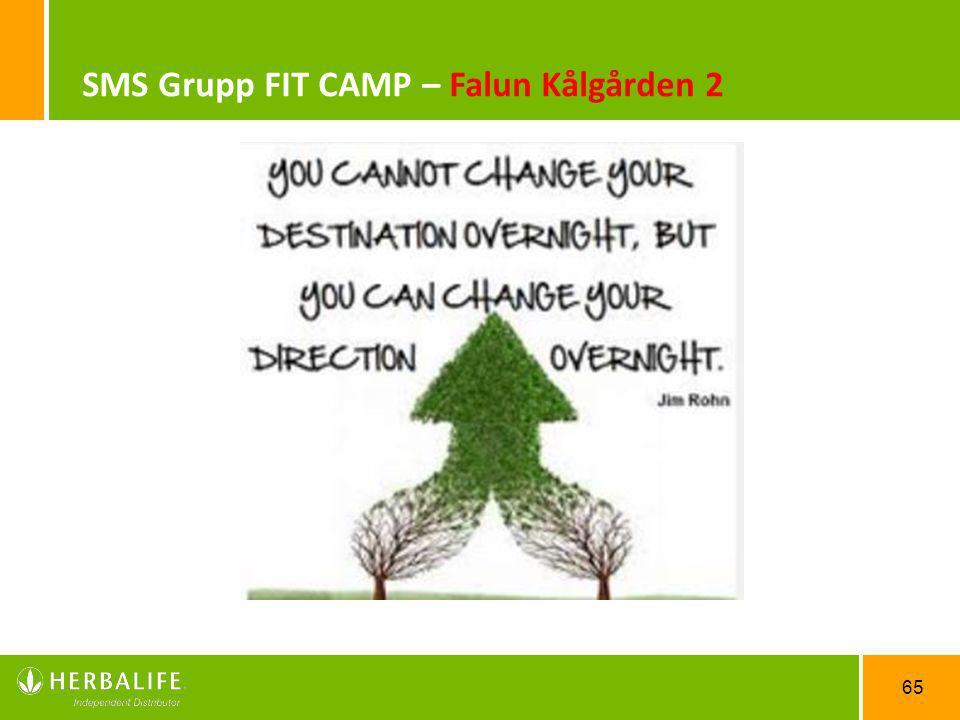 SMS Grupp FIT CAMP – Falun Kålgården 2