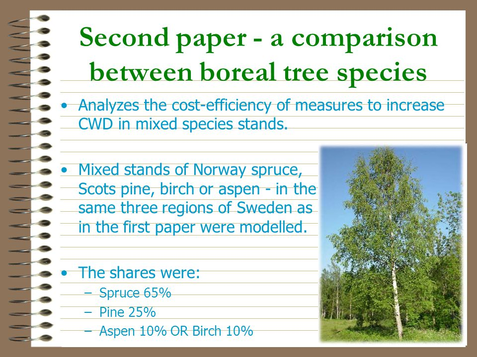 Second paper - a comparison between boreal tree species