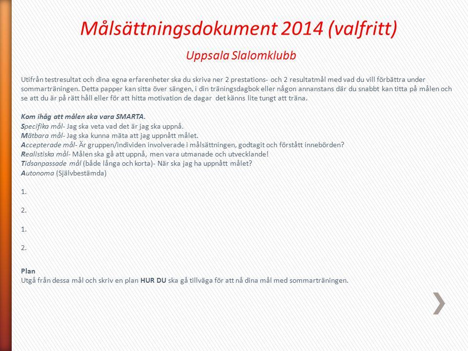 Målsättningsdokument 2014 (valfritt)