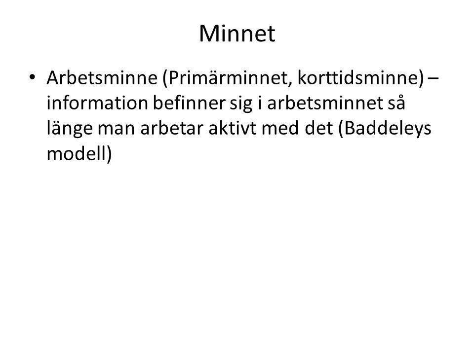 Minnet Arbetsminne (Primärminnet, korttidsminne) – information befinner sig i arbetsminnet så länge man arbetar aktivt med det (Baddeleys modell)