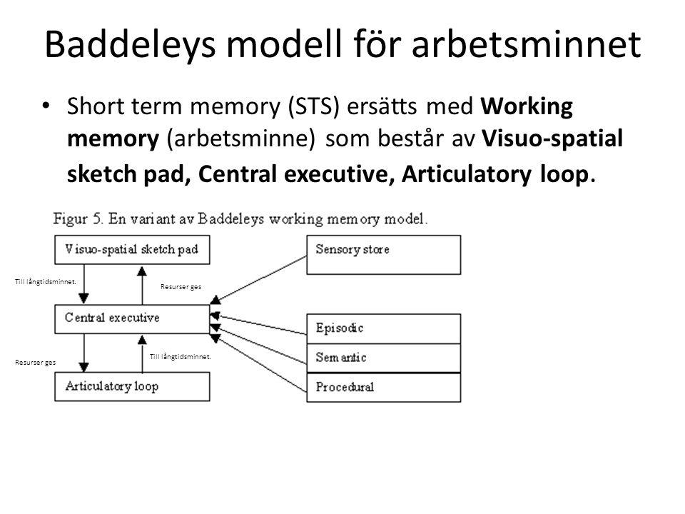 Baddeleys modell för arbetsminnet