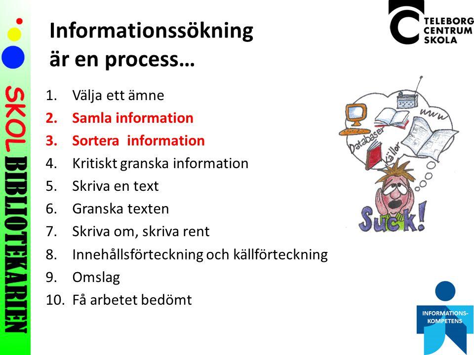 Informationssökning är en process…