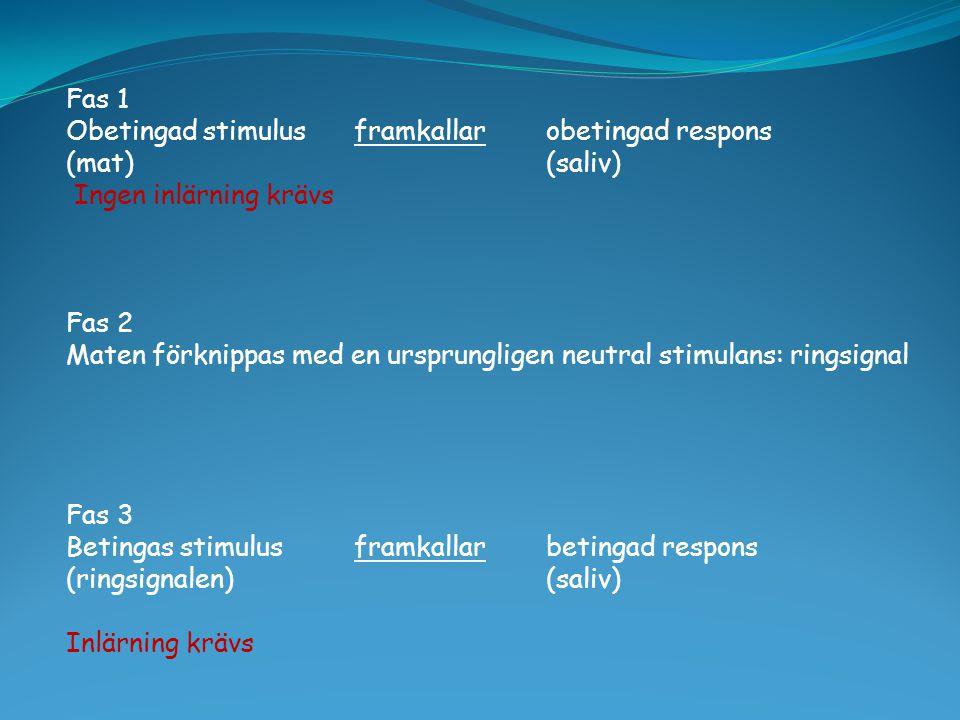 Fas 1 Obetingad stimulus framkallar obetingad respons. (mat) (saliv) Ingen inlärning krävs. Fas 2.