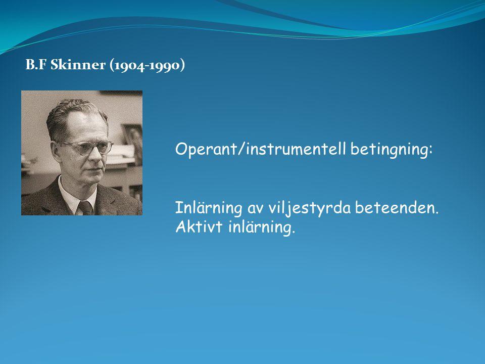 Operant/instrumentell betingning: