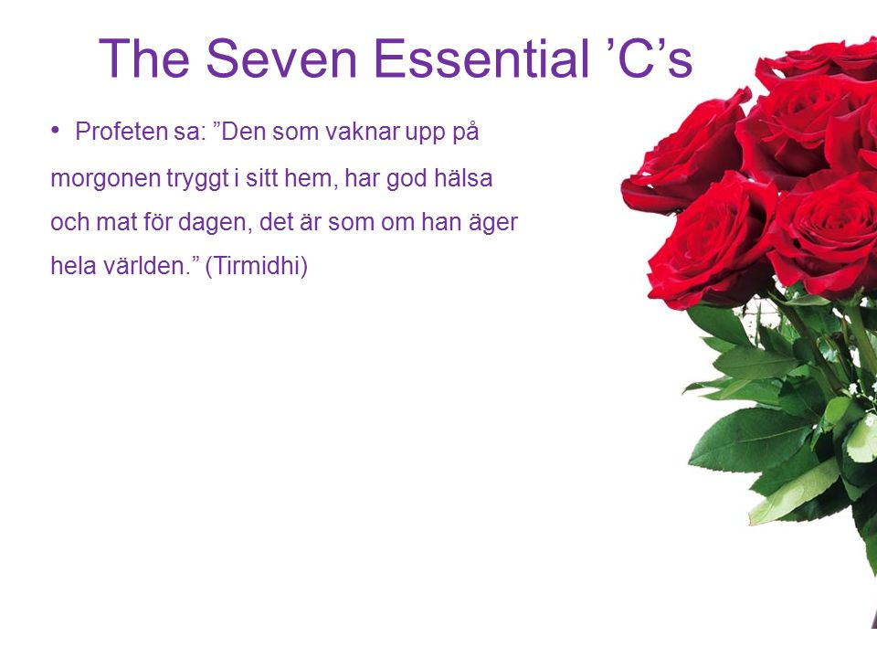 The Seven Essential 'C's