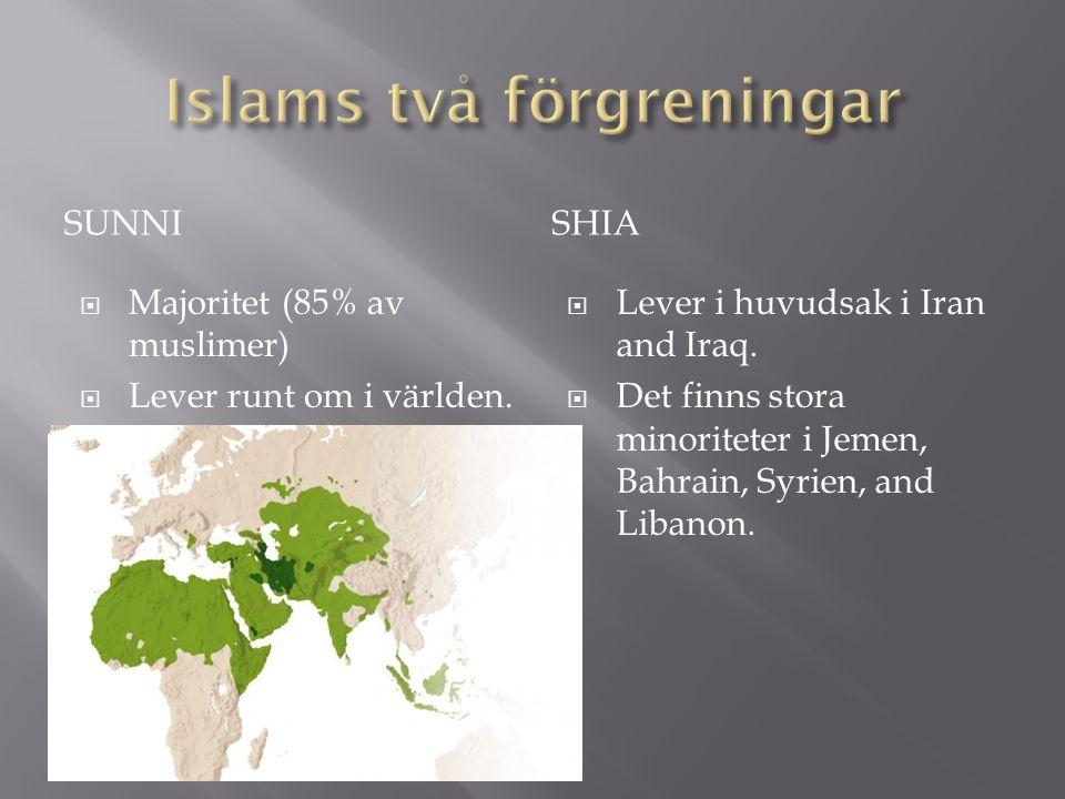 Islams två förgreningar