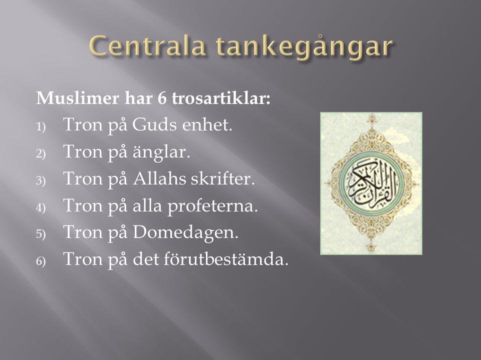 Centrala tankegångar Muslimer har 6 trosartiklar: Tron på Guds enhet.