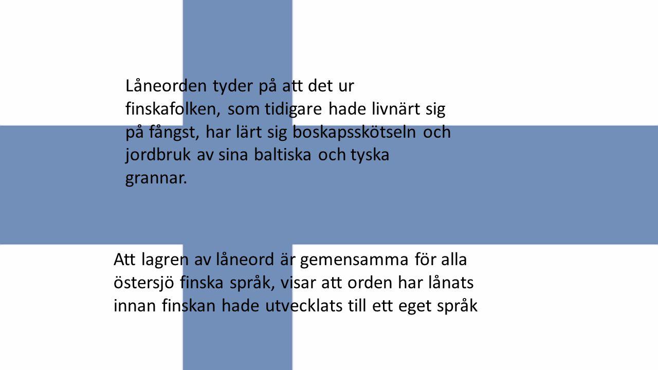 Låneorden tyder på att det ur finskafolken, som tidigare hade livnärt sig på fångst, har lärt sig boskapsskötseln och jordbruk av sina baltiska och tyska grannar.
