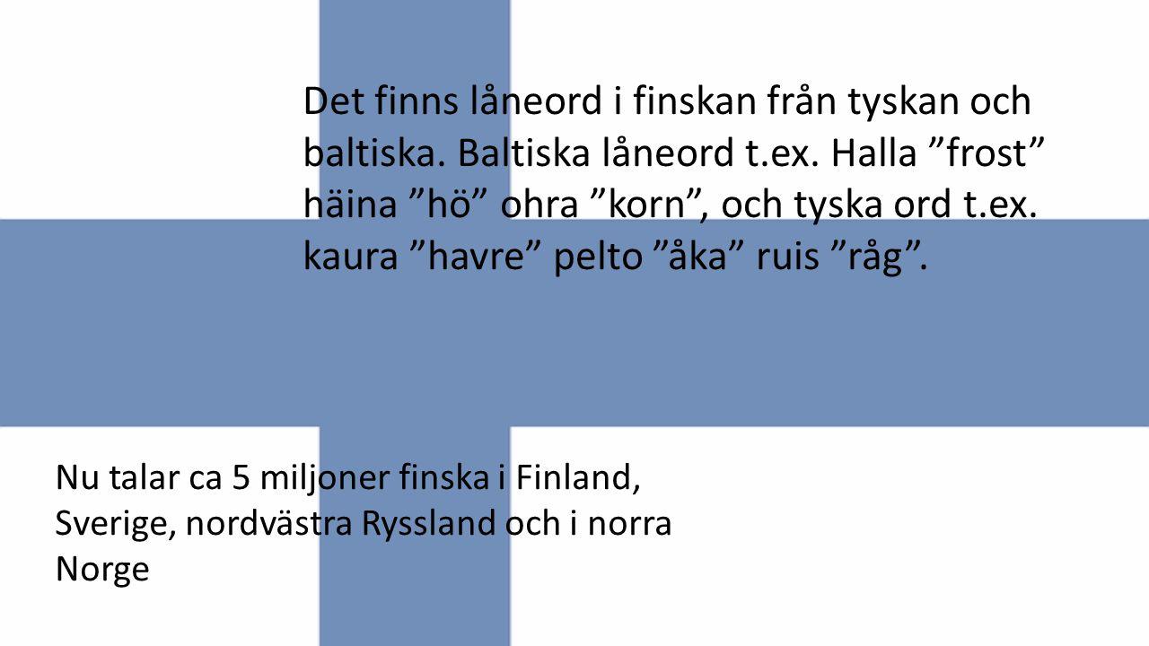 Det finns låneord i finskan från tyskan och baltiska
