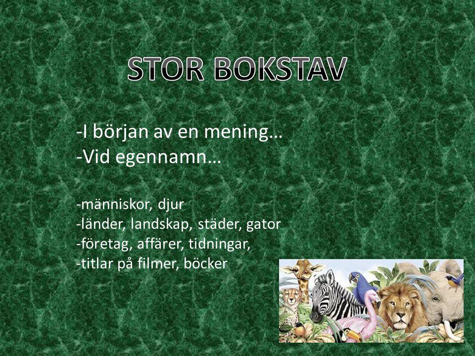 STOR BOKSTAV -I början av en mening… -Vid egennamn… -människor, djur