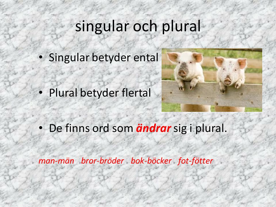 singular och plural Singular betyder ental Plural betyder flertal