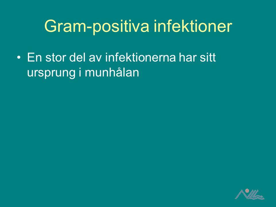 Gram-positiva infektioner