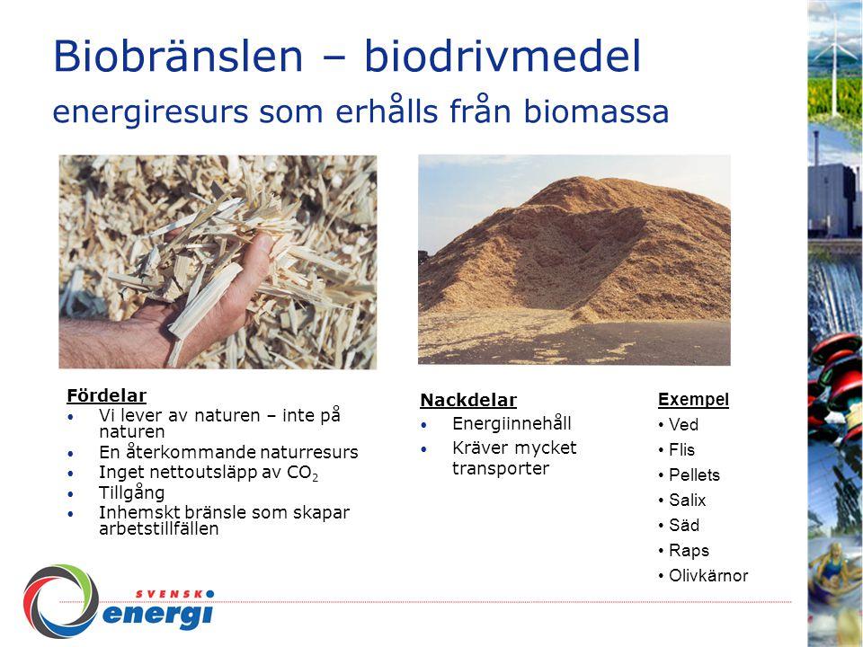 Biobränslen – biodrivmedel energiresurs som erhålls från biomassa