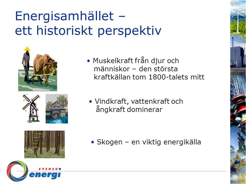 Energisamhället – ett historiskt perspektiv