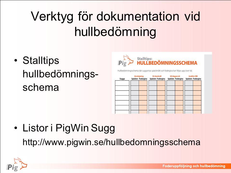 Verktyg för dokumentation vid hullbedömning