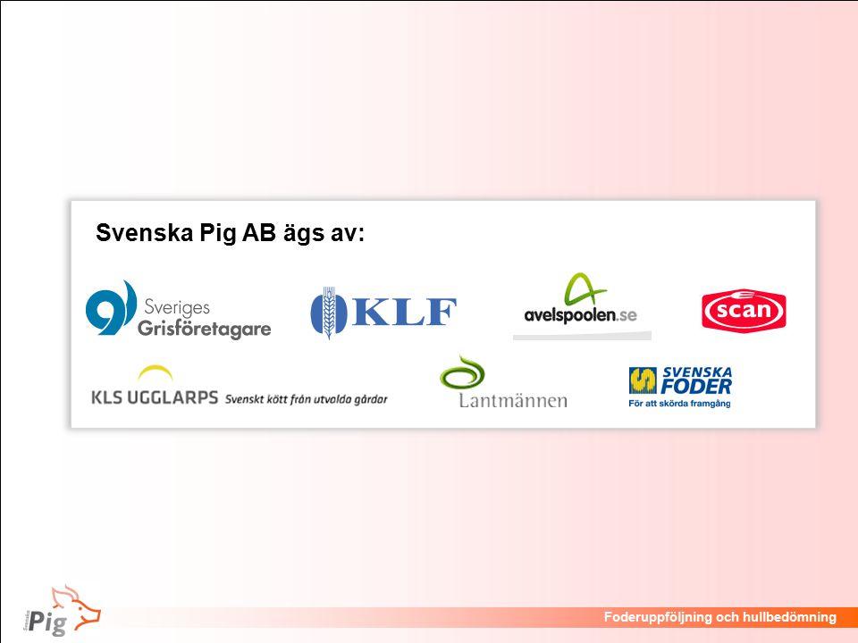 Svenska Pig AB ägs av: 3