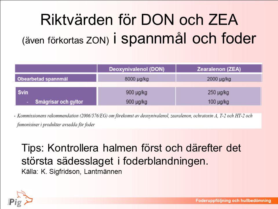 Riktvärden för DON och ZEA (även förkortas ZON) i spannmål och foder