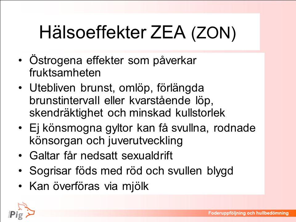 Hälsoeffekter ZEA (ZON)