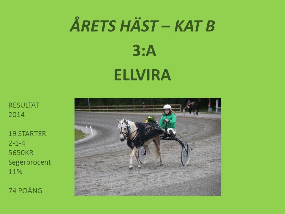 ÅRETS HÄST – KAT B 3:A ELLVIRA