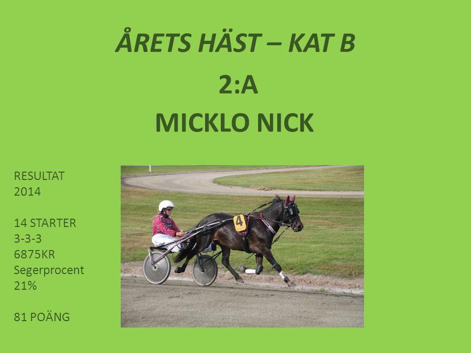 ÅRETS HÄST – KAT B 2:A MICKLO NICK